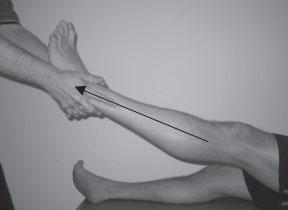 femoral-acetabular-3-web